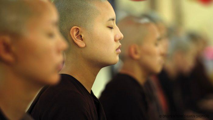 moines_karen_shepperd