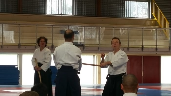Luc Mathevet stage aïkido à Dijon