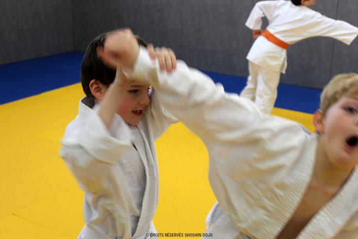 shoshin_dojo_aikido_stage_enfants_85
