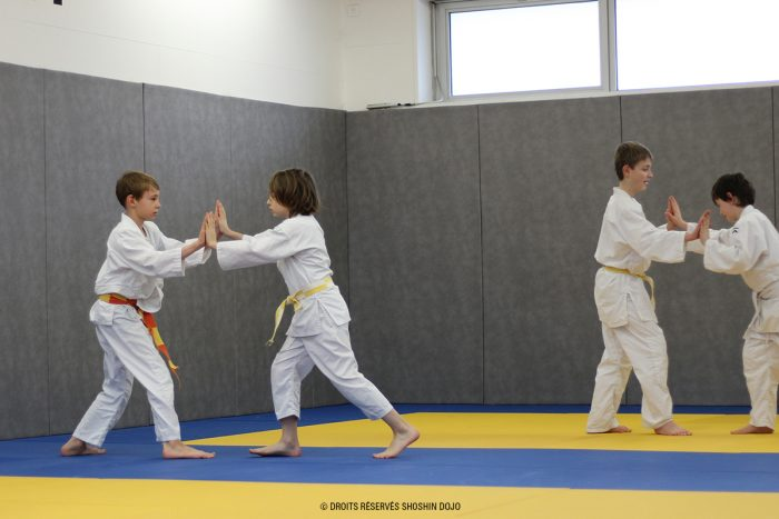 shoshin_aikido_stage_enfants_besançon_exercice_contact_groupe