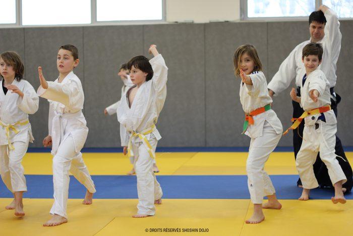 shoshin_aikido_stage_enfants_besançon_shomen_uchi_groupe