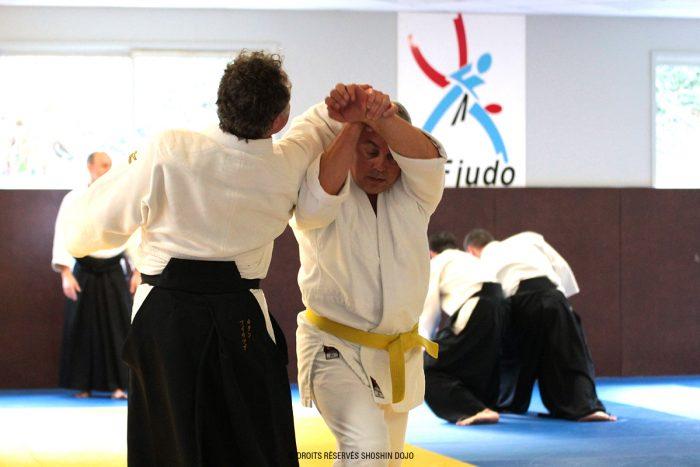 shiho nage stage aïkido