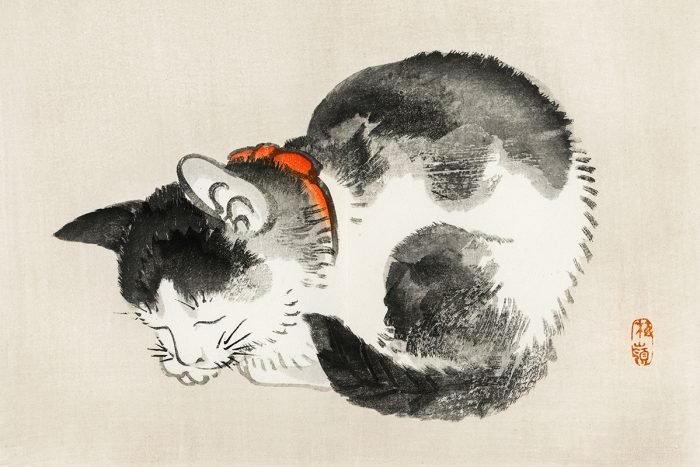 Sleeping cat by Kōno Bairei (1844-1895). Digitally enhanced from our own original 1913 edition of Barei Gakan.